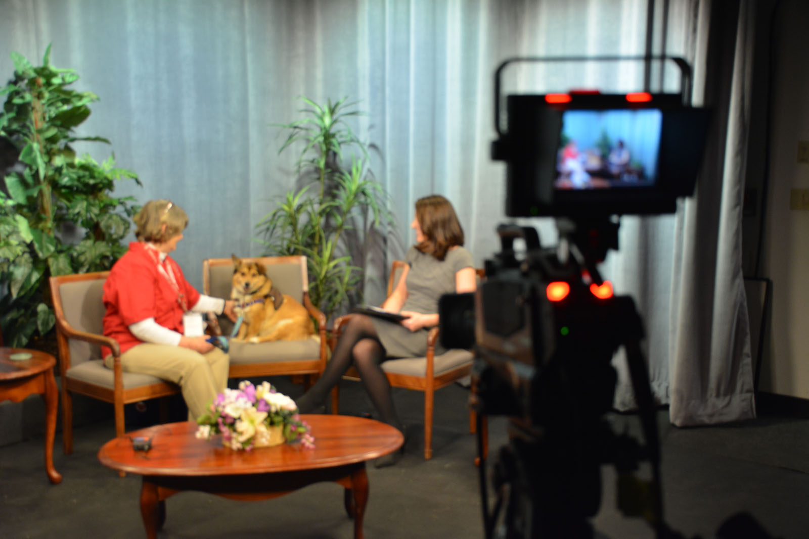 Photo of Two Women and a Dog in the Northeastern Connecticut studio